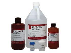 B5 Zinc Chloride Fixative, Gallon